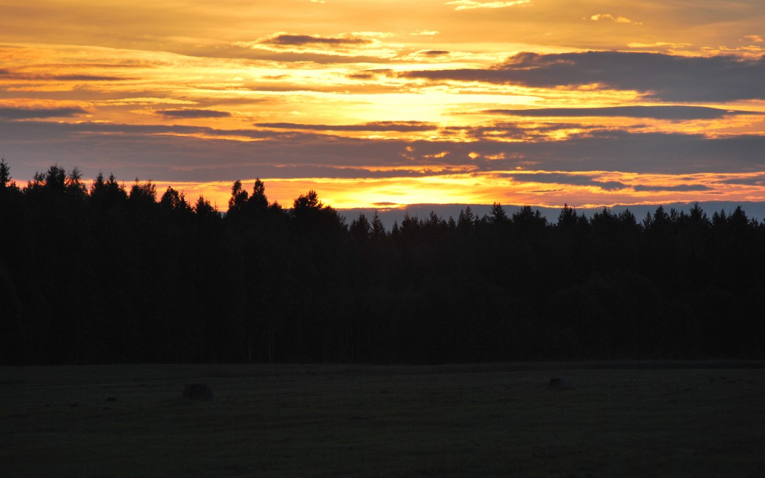 Sommertur til Siljansnäs